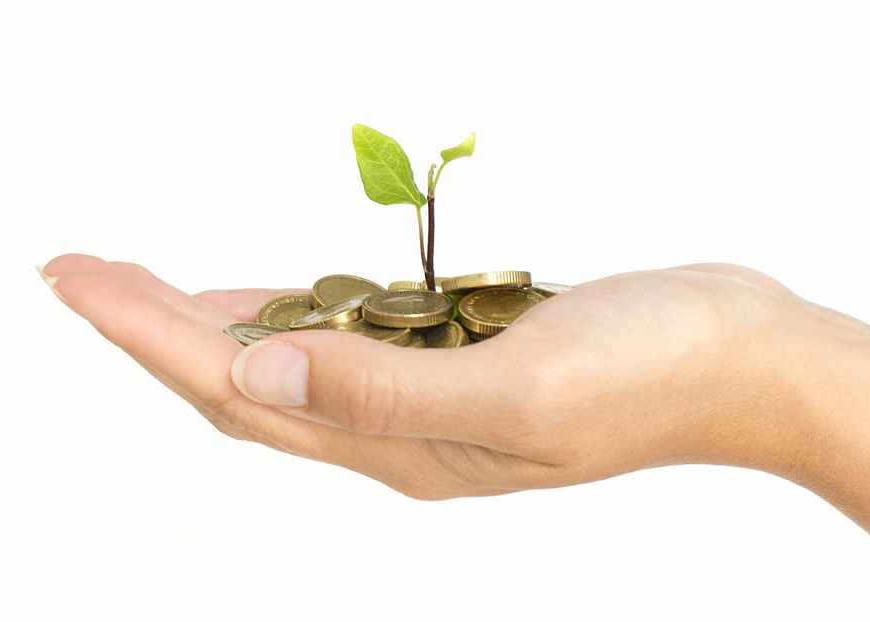 Crowdfunding – eine echte Alternative zum Bankkredit?